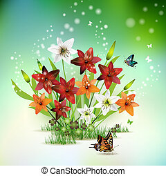 Flowers in the grass and butterflies, lilies of different...