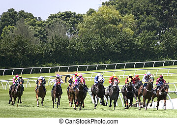 Horse Racing - Horse racing at a turf club