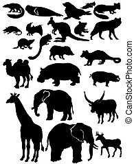 Wildlife animals - Silhouettes of wildlife animals