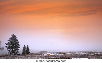 Foggy winter scene with evening clouds