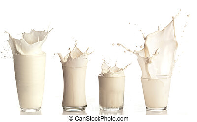 fresh milk splashing on a glass on white background...
