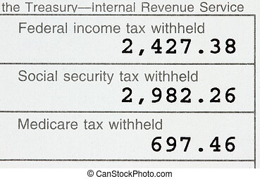 W-2 Form - Macro of a w-2 showing federal, social security...