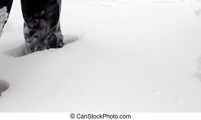 Man wades knee-deep through snow