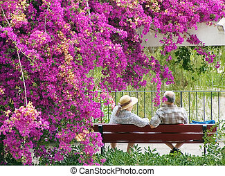 old pair - an old pair of lovers sitting on the bench