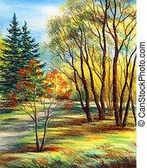 Landscape, forest - Picture, landscape. Forest, Siberia,...