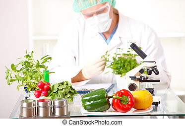 Researcher with GMO plants in the laboratory - Researcher...