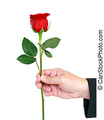 giving red rose