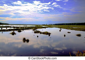 Scarborough marsh - Marsh land in Scarborough Maine at high...