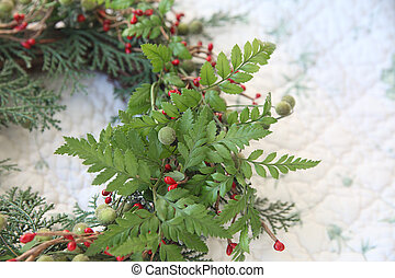 Christmas wreath with ferns - wreath with fresh ferns on a...