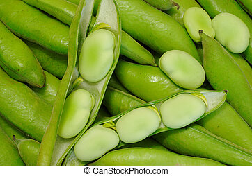 Habas - Pods of Peruvian green beans and single beans