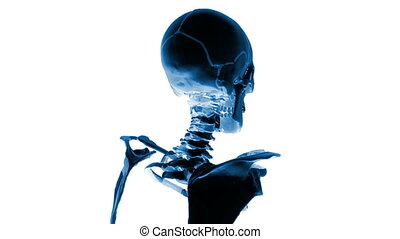 Human x-ray head, medical background