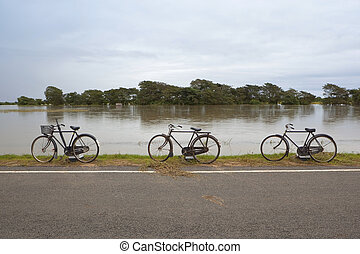 three sri lankan bicycles - sri lanka landscape with three...