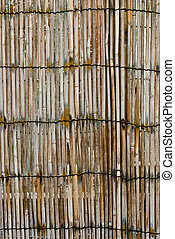 Bamboo Fencing - A close-up view of some bamboo fencing...