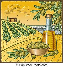 Olive harvest - Retro landscape with olive harvest in...