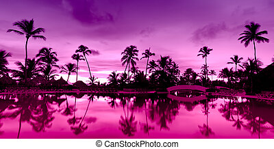 Panorama Pink and red sunset over sea beach with palms...