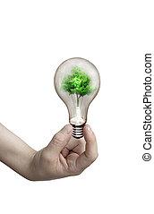 lumière, ampoule, main