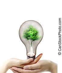 lumière, ampoule, mains