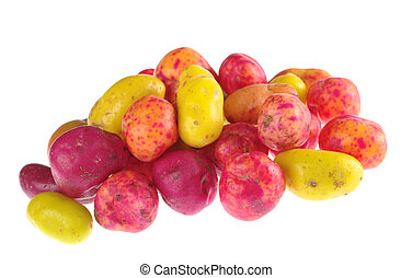 Ulluco (lat. Ullucus tuberosus), a colorful root crop form...