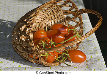 Tomatoes in overturned basket