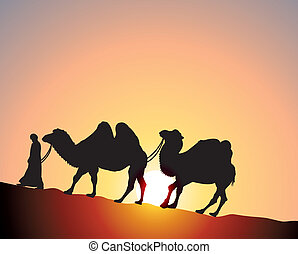 camels and bedouin - vector camels and bedouin