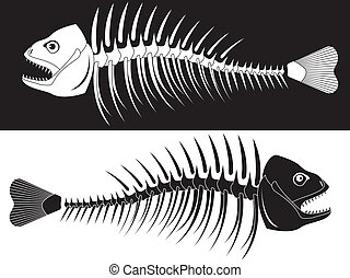skeleton of fish - Bones of a skeleton of fish in a vector
