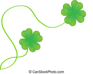 isolated clover - isolated isolated clover on white...