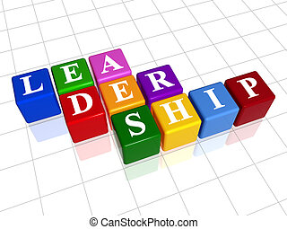 leadership in colour 2 - 3d colour boxes with text -...