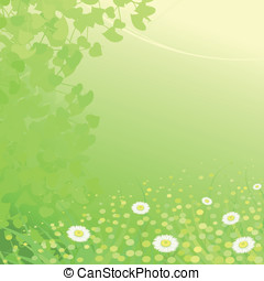 Camomiles background - Gentle green background with...