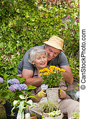 Senior couple working in the garden