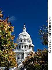 US Capital Building Dome, Washington DC, Autumn Yellow...