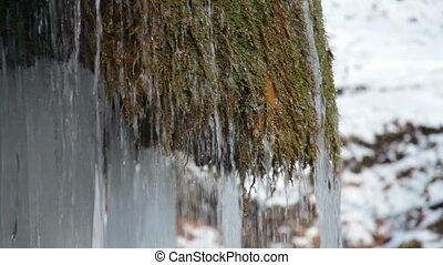 Waterfall and mossy rock in winter - Waterfall Silver stream...