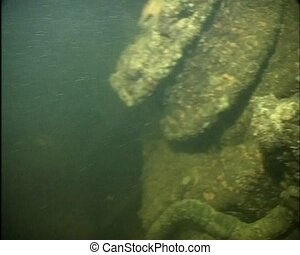 Sunken airplane under the water