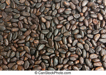 Cocoa beans - Raw cocoa beans background