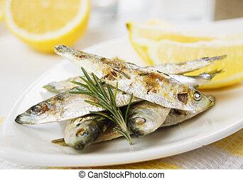 grillé,  fish,  sardine