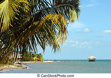Belize, Placencia - Coast of peninsula Placencia, Belize...
