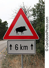 Caution wild boar road sign - Red triangle warning sign of...