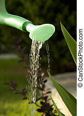 Watering the garden  - Garden watering tool