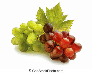 Bunch of white and red grapes - Painting of a bunch of white...