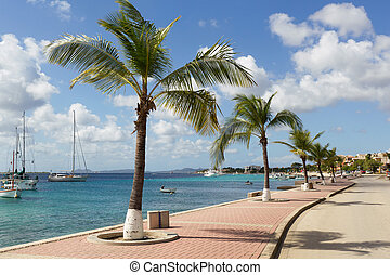BONAIRE - street view of Kralendijk at Bonaire