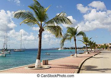 BONAIRE - street view of Kralendijk at Bonaire