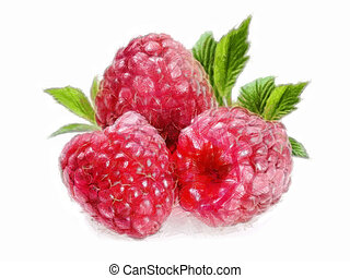 Raspberry - 3 Raspberries - Painting of three raspberries...
