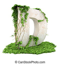 Ivy letter D isolated on white background.