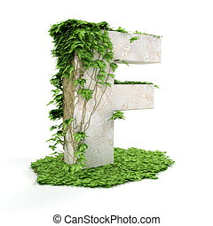 Ivy letter F isolated on white background.