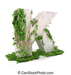 Ivy letter K isolated on white background - Letter K threads...