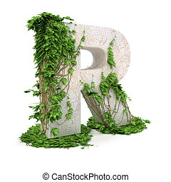 Ivy letter R isolated on white background. - Letter R...