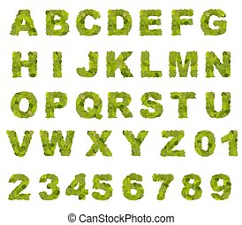 Green leaf alphabet collection, font in white