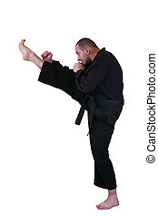 martial art side kick - Young Martial artist with his high...