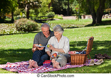 Elderly couple picnicking in the garden