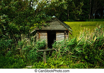 Wooden Cabin - wooden cabin on swamp with high green grass