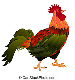 standing rooster - Illustration of a standing rooster over...